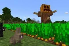 scarecrow-addon-1-520x245.jpg